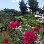 Λατρεύει τον κήπο της η παρουσιάστρια…