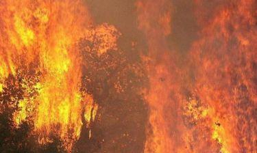 Δραματική η κατάσταση στη Λακωνία-Εκτός ελέγχου η μεγάλη πυρκαγιά (photos&video)