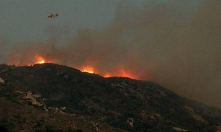 Πυρκαγιές-Μάχη με τις φλόγες σε Ζάκυνθο, Πρέβεζα και Άργος