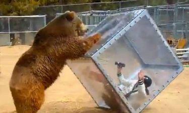 Τρομαγμένη γυναίκα έγινε παιχνίδι στα χέρια μιας… αρκούδας! (video)