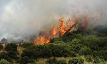 Πυρκαγιά στη Σταμάτα - Συνεχής ενημέρωση