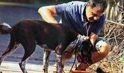 Σταύρος Θεοδωράκης: Ολιγοήμερες διακοπές στην Σίφνο