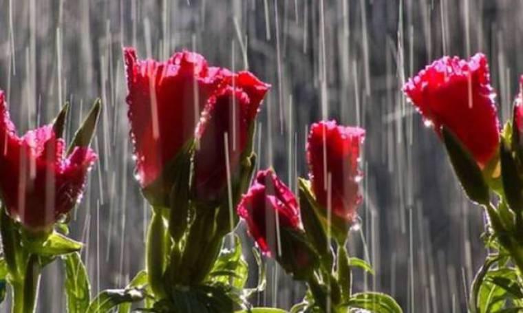 Καιρός: Δεκαπενταύγουστος με βροχές και τη θερμοκρασία στο «κόκκινο»