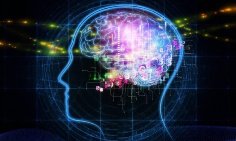 Ρεσβερατρόλη: Πού βρίσκεται η ουσία που «φρενάρει» το Αλτσχάιμερ
