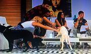 Χριστίνα Μουστάκα: Πιο ανέκφραστη δεν γίνεται!