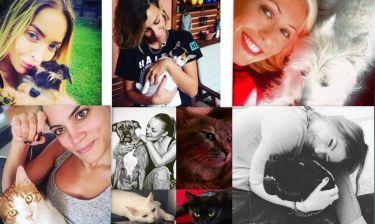 Παγκόσμια Ημέρα των Ζώων: Οι επώνυμοι της σόουμπιζ εύχονται χρόνια πολλά στους τετράποδους φίλους