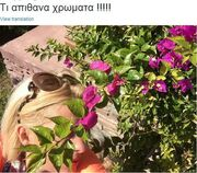 Ελένη Μενεγάκη: Το Σαββατοκύριακό της στην Άνδρο και το μεγάλο της δίλημμα! (φωτό)