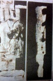 Η… ζωγράφος Πόπη Τσαπανίδου (φωτό)