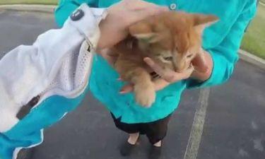 Λίγοι θα το τολμούσαν! Σχεδόν πήδηξε από τη μηχανή της για να σώσει αυτό το γατάκι! (video)