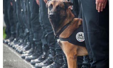 Επίθεση Παρίσι: Θύμα των τρομοκρατών και ο Ντίζελ