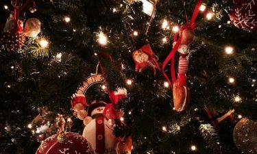 Πασίγνωστη τραγουδίστρια μας... συστήνει το χριστουγεννιάτικο δέντρο της!