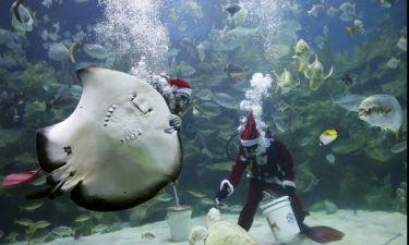 O Άγιος Βασίλης είναι δύτης