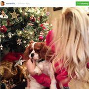 Κατερίνα Καινούργιου: Αγκαλιές και παιχνίδια κάτω απο το χριστουγεννιάτικο δέντρο με τον...