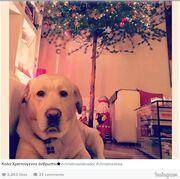 Σμαράγδα Καρύδη: Δείτε πως ευχήθηκε «Καλά Χριστούγεννα» στο Instagram!