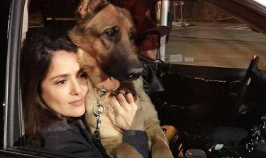 Ο γείτονας της Salma Hayek σκότωσε τον σκύλο της… κατά λάθος