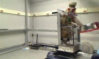 Μαϊμού οδηγεί αναπηρικό καροτσάκι μόνο με σκέψη! (εικόνες - βίντεο)