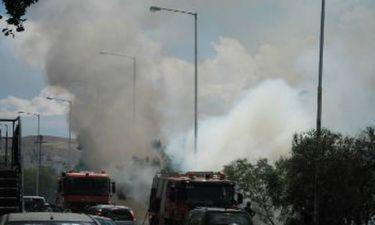 Φωτιά κοντά στην υψηλή γέφυρα της Χαλκίδας (pics)