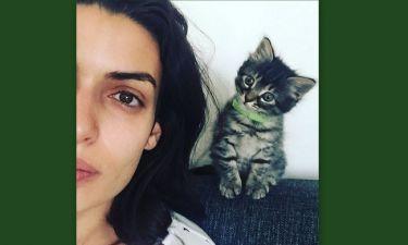 Ποιος κοιτάει τη Σωτηροπούλου; Το γατί είναι όλα τα λεφτά