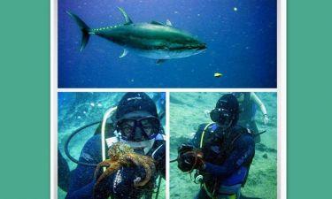 Scuba diving για τον…