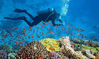 Επιστήμονες ανακάλυψαν γιατί μυρίζει έτσι η θάλασσα