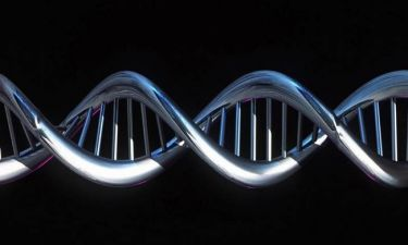 Ανακάλυψαν τα γονίδια της μάθησης