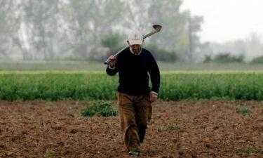 Είσαι αγρότης… δες πώς θα πάρεις επιδότηση 2 δισ. ευρώ