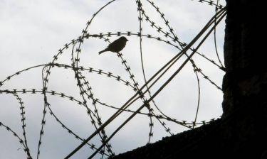 Αποκλειστικό: Ο ρόλος των ποινικών στη μεγάλη απόδραση του Κορυδαλλού
