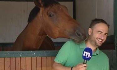 Απίστευτο γέλιο! Δείτε το άλογο που… «φλέρταρε» on air δημοσιογράφο του Μακεδονία TV