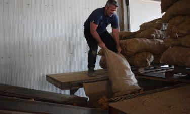 «Ανειδίκευτος εργάτης»: Ο Χαριτάτος δοκιμάζει τις αντοχές του στην περισυλλογή της πατάτας