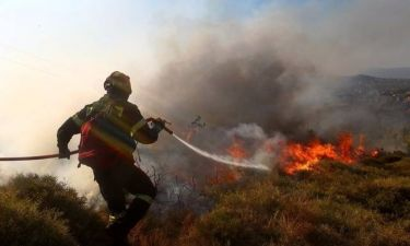 Φωτιά στη Λακωνία - Πύρινος εφιάλτης και στη Χαλκιδική