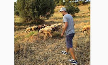 Έβγαλε τα πρόβατα να βοσκίσουν ο…