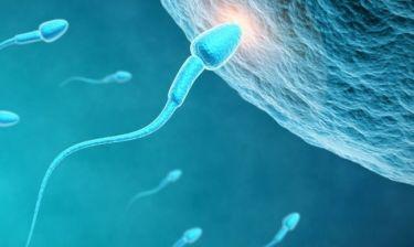 Ανδρική γονιμότητα: Υπάρχει ένα λαχανικό που την ενισχύει