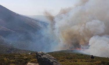 Ανεξέλεγκτη η φωτιά στην Κάρυστο - Κάηκαν σπίτια, εκκενώθηκε οικισμός