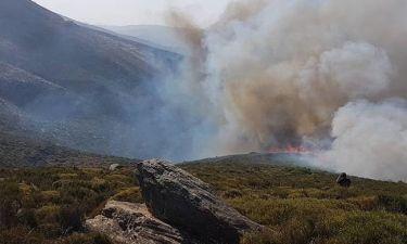 Νέες πυρκαγιές σε Κεφαλονιά και Μεσολόγγι – Υπό έλεγχο η φωτιά στην Εύβοια