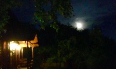 Δεν θα πιστεύετε ποιος Έλληνας δημοσιογράφος κάνει διακοπές στα Καρπάθια Όρη