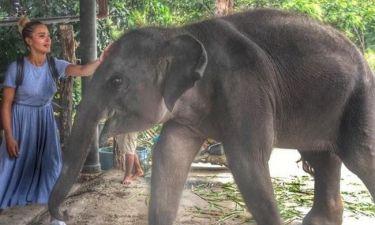 Αμαρυλλίς: «Ο μικρός της φίλος», που δεν θα ξεχάσει από το ταξίδι στην Ταϋλάνδη!