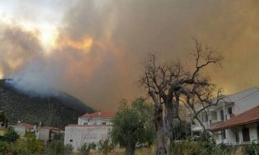 Πύρινος εφιάλτης:Σε κατάσταση έκτακτης ανάγκης η Θάσος - Κάηκαν σπίτια, απειλούνται χωριά (pics&vid)