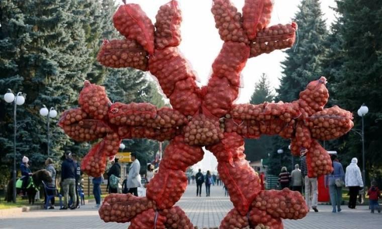 Μια νιφάδα χιονιού από πατάτες με πολιτικό μήνυμα