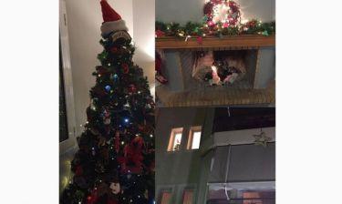 Απίστευτο! Ελληνίδα δημοσιογράφος στόλισε το σπίτι της για τα Χριστούγεννα
