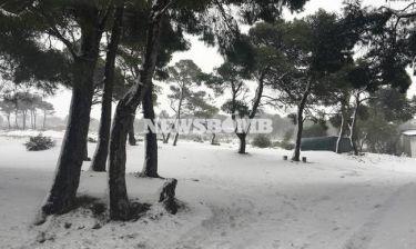 Καιρός Live: Στο «μάτι» του χιονιά για 48 ώρες όλη η Ελλάδα!