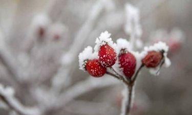 Καιρός ΕΜΥ: Πού θα χιονίζει τη Δευτέρα (9/1) - Αναλυτική πρόγνωση