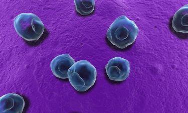 Τρεις λοιμώξεις των γεννητικών οργάνων που σαμποτάρουν τη γονιμότητα