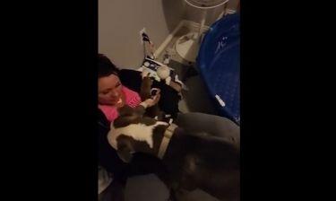 Η σκυλίτσα εμπιστεύεται τα μωρά της στη γυναίκα που της πρόσφερε καταφύγιο!