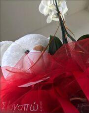 Χρηστίδου: Το δώρο που της έκανε ο Μαραντίνης ανήμερα των ερωτευμένων