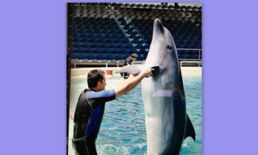 Ο Γιώργος Λιάγκας και... το δελφίνι
