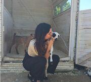 Τόνια Σωτηροπούλου: Η φωτογραφία και το μήνυμά της για τα ζώα λίγο πριν το Πάσχα