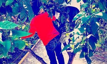 Η Αέλια Κατσούλη σκαρφάλωσε στο δέντρο