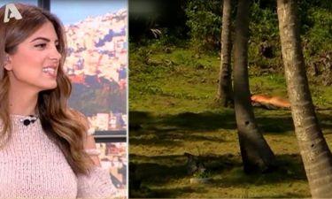 Τρελό Γέλιο: Η απορία της Τσιμτσιλή για τον Σπαλιάρα που έκανε γυμνισμό στο survivor