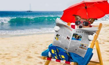 Η ομπρέλα δεν σας προστατεύει από τις επιπτώσεις του ήλιου: Δείτε γιατί