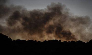 Φωτιά LIVE: Συναγερμός! Προς Μαλακάσα το μέτωπο της φωτιάς - Πλησιάζει την εθνική οδό